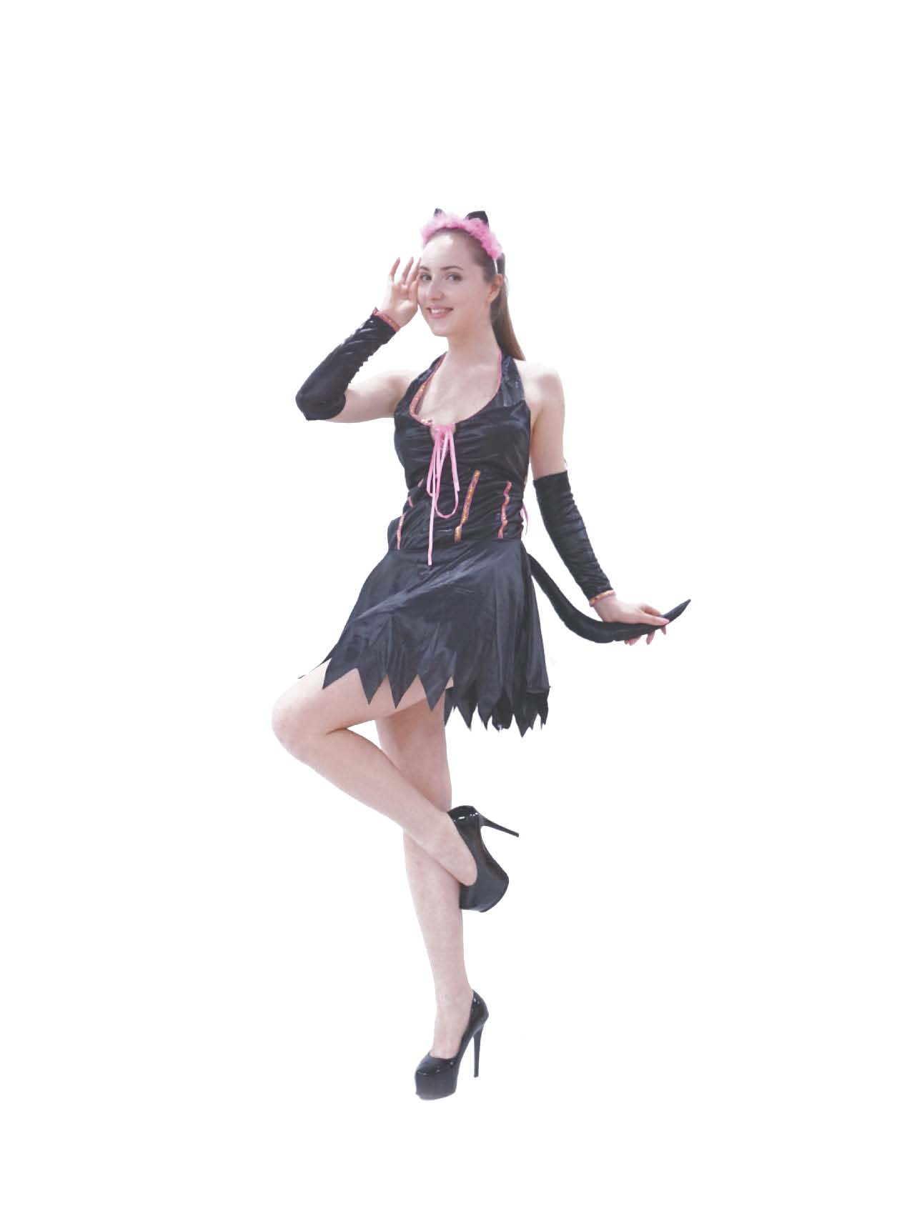 LC4016 Cat Woman Costume